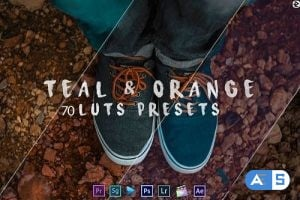 Teal And Orange – Standard Pack (RMN) – 70 Luts And Presets (Win/Mac)