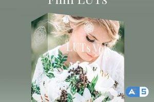 Kreativ Wedding LUTs Vol1 – Vol4 (Win/Mac)
