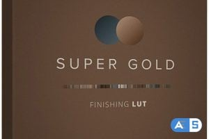 Lens Distortions – Super Gold Finishing LUTs