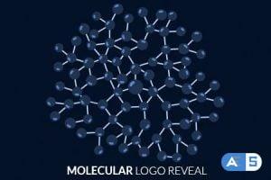 Videohive – Molecular Logo Reveal – 17457826