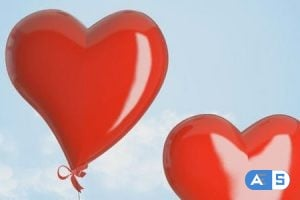 VideoHive – Valentine Gallery 4062962