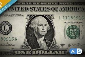Videohive – Money Animation – 3129575