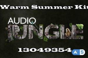 Audiojungle Warm Summer Kit 13049354