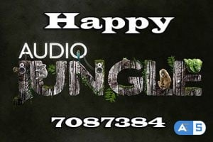 AudioJungle – Happy 7087384