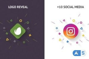 Videohive Clean Logo Reveal 20914662