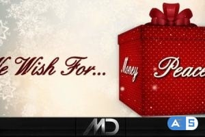 Videohive Christmas / New Year Cards & Box 886042