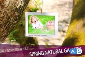 Videohive Gallery 16412173