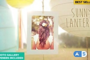 Videohive Wedding 12638846 (With 6 July 18 Update)