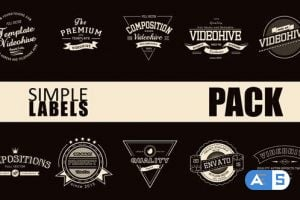 Videohive Simple Label Pack 10069090