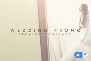 Videohive Wedding Promo 25401543