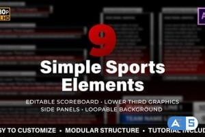 Videohive Simple Sports Elements Kit 24813523