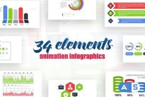 Videohive Infographics vol.13 25593808