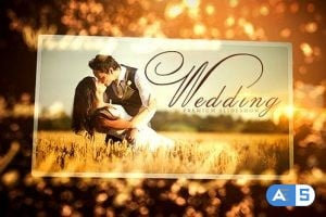 Videohive Wedding 16410509