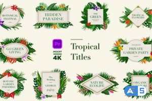 Videohive Tropical Titles 24003189