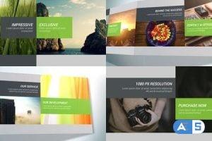 Videohive Company Profile and Presentation 11672006