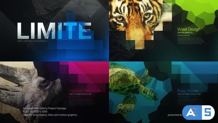 The Limit Cinematic Titles After Effects Video Template Video Template AEP 1608779