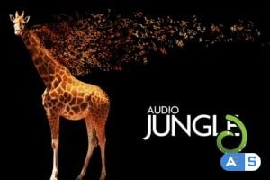 AudioJungle Clean Impact Logo 15938688