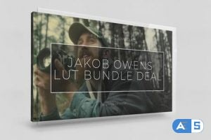 Vamify – Jakob Owens LUT Bundle Deal
