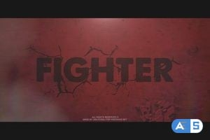 Videohive Fighter 22379818