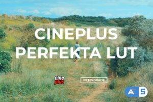 Cineplus Perfekta LUTs