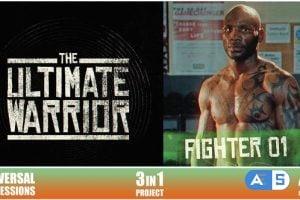 Videohive Promo Fight 25762181
