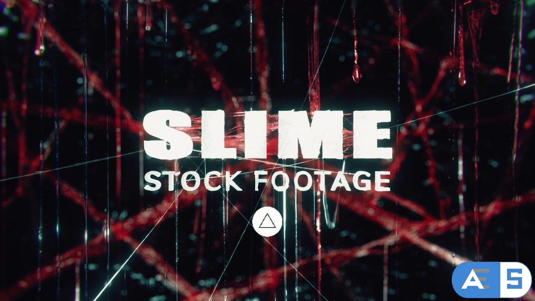 Slime Stock Assets – Triune Digital