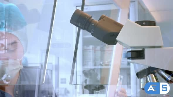 Videohive Female Scientist Looking Microscope Eyepiece. Portrait of Woman Scientist Looking Through Microscope 26028058