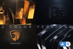 Videohive Gold And Silver Logo Reveal 24753721