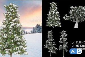 Videohive Winter Trees 21067914