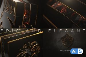Videohive Epic And Elegant Logo Reveal 25832914