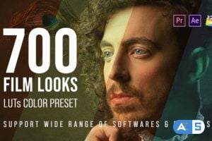 Videohive 700 Film Looks – LUT Color Preset Pack 25157078