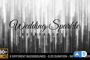 Videohive Wedding Sparkle Backgrounds HD (6-pack) 23344958