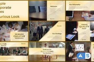 Videohive Simple Corporate Slides Luxurious Look 19079945