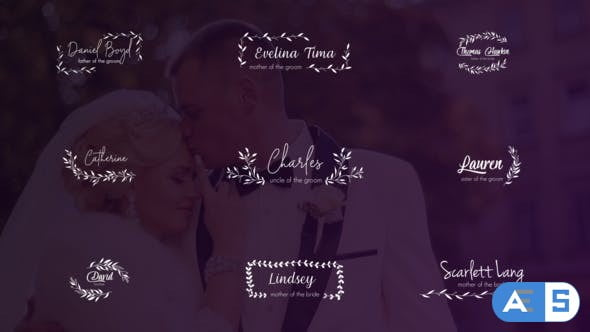 Videohive Wedding Titles and Lower Thirds 24656288