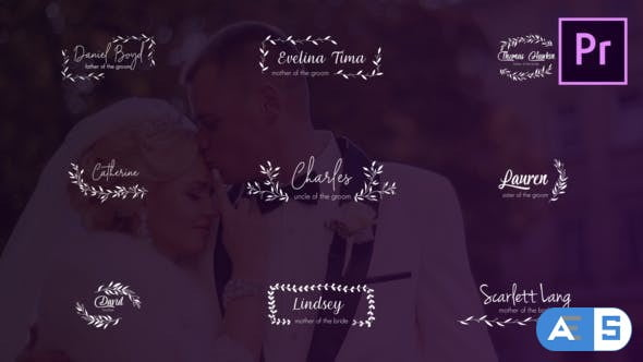 Videohive Wedding Titles and Lower Thirds 24659098