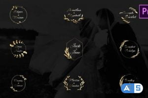 Videohive Lovely Gold and Silver Titles 27245885