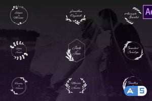 Videohive Wedding Titles 26800409