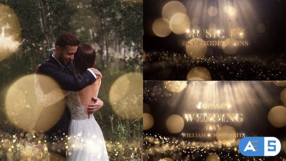 Videohive Wedding 22263676