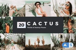 20 Cactus Lightroom Presets and LUTs
