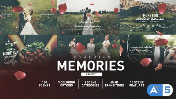 Videohive Wedding Memories 25652795