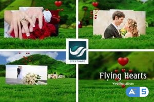 Videohive Flying Hearts Wedding Album 6623915