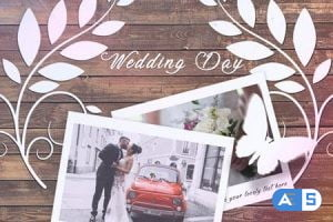 Videohive Wedding Slideshow 20919263