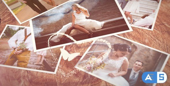 Videohive Wedding Slideshow 21091759