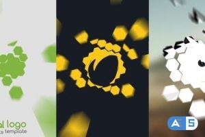 Videohive Minimal Logo Formation 12138835