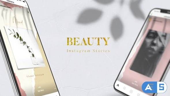 Videohive Beauty Instagram Stories 29101847