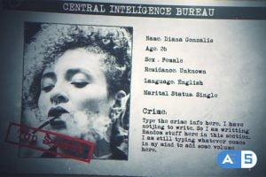 Videohive Criminal Profile 29479847