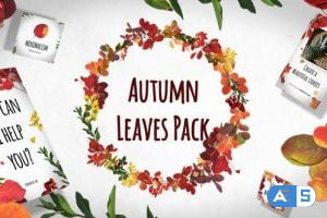 Videohive Autumn Leaves Pack 29195640