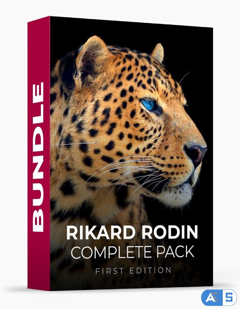 Rikard Rodin Complete Pack