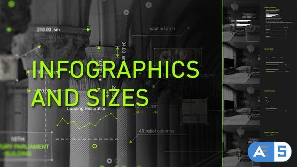 Videohive Infographics and sizes 23163526