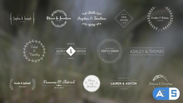 Videohive Wedding Titles 18849528